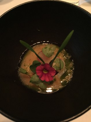Ceviche- Coquille